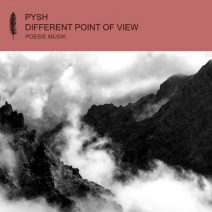 Pysh, LADS - Different Point of View [POM128]