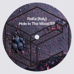 RaKe (Italy) – Hole In The Wood EP [DTR278]