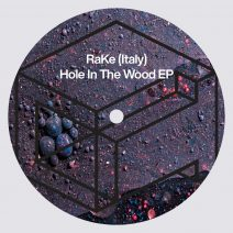 RaKe (Italy) - Hole In The Wood EP [DTR278]