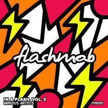 In A Flash, Vol. 3 [FMR185]