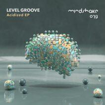 Level Groove - Acidized [MINDSHAKE079]