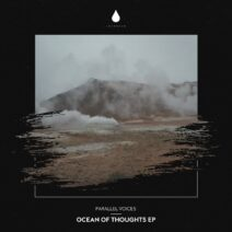 Parallel Voices - Ocean of Thoughts EP [IMM022DJ]