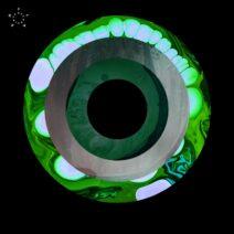 Anml Mthr - Wicked City EP [FLASH270]