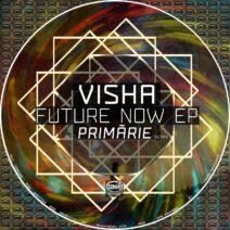 Visha - Future Now [TZH152]