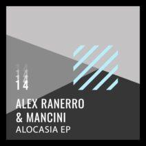 Alex Ranerro, Mancini - Alocasia [196006736309]